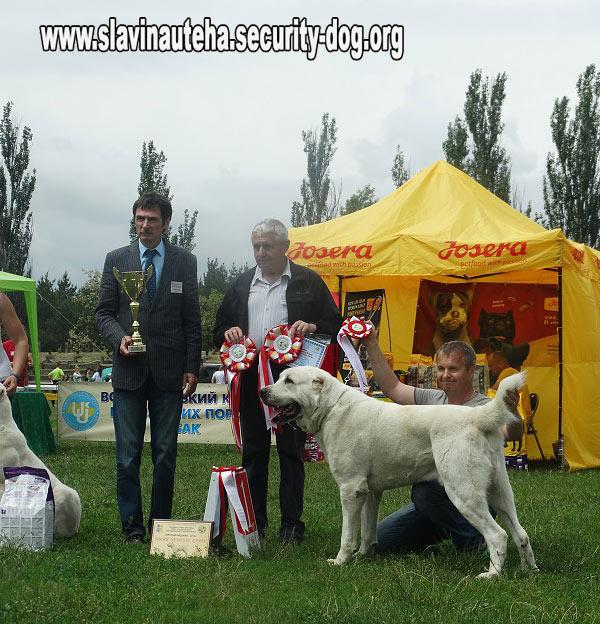 Купить ROYAL CANIN Сухой корм для щенков мелких пород